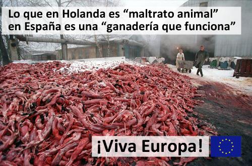 Viva_Europa_500
